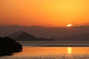 matahariku-pic33