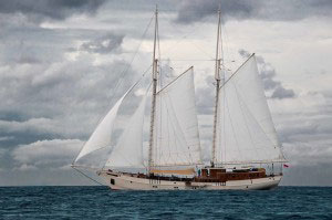 mutiara-laut-pic1